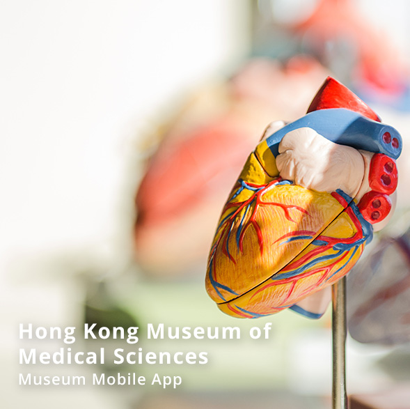 Hong Kong Museum of Medical Science - Museum Mobile App