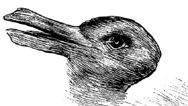 rabbitorduck