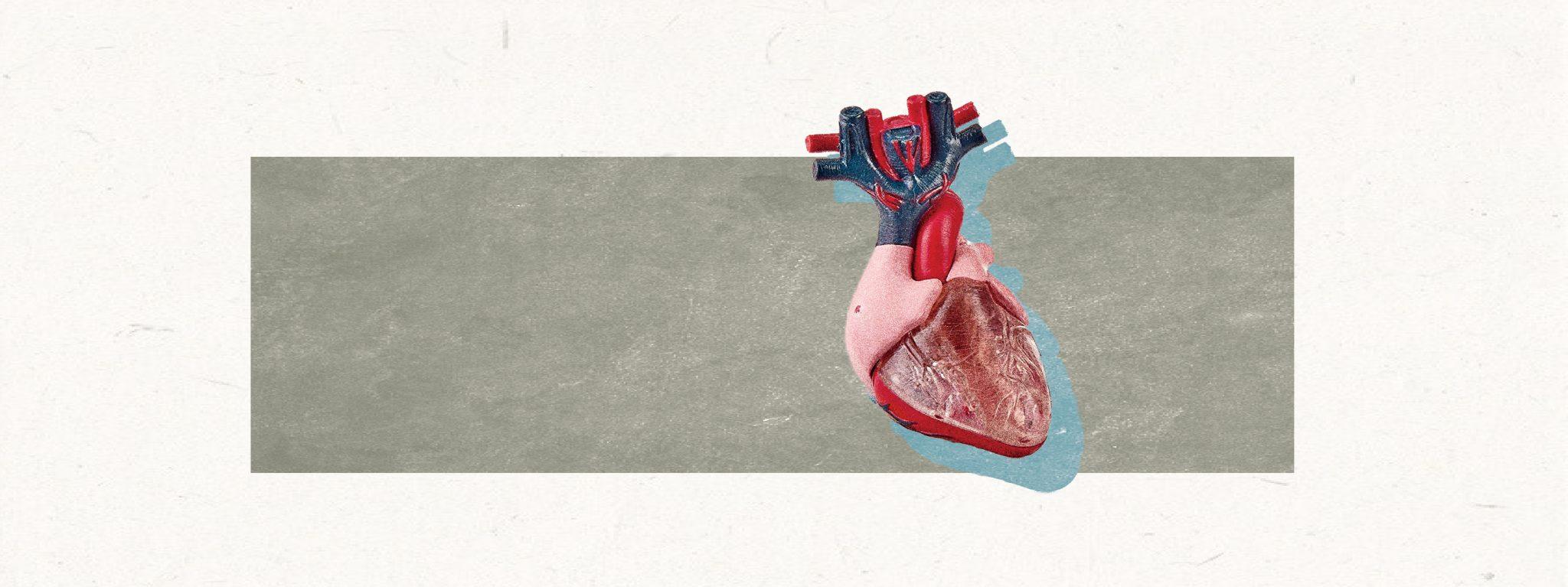 【3D打印連心臟都可以印到?】