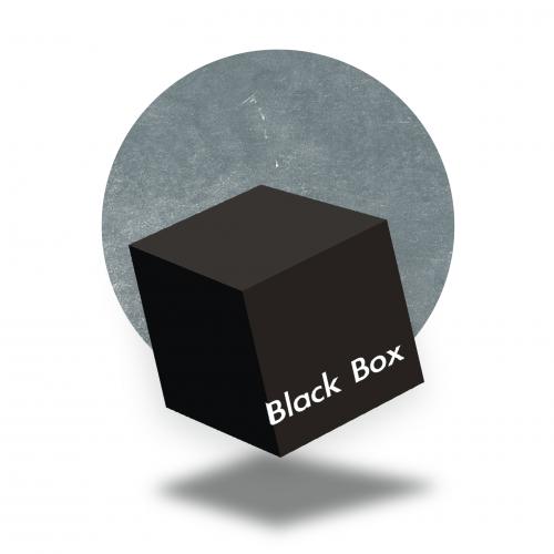 BlackBoxWordPress 20